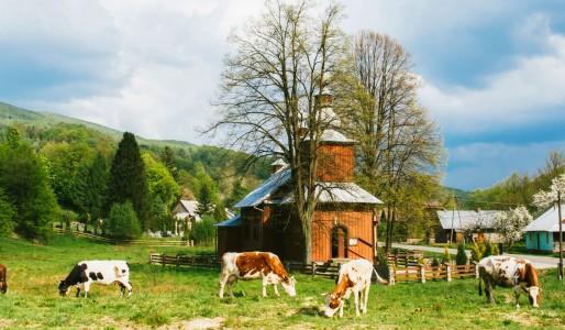 Cerkwie, Łemkowie i opuszczone wsie. Beskid Niski.