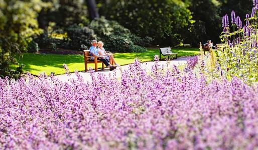 Edynburg ogród