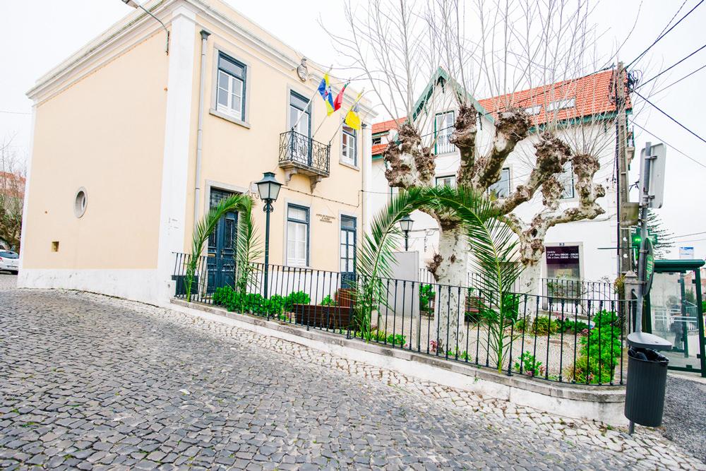 niedziela_palmowa_portugalia