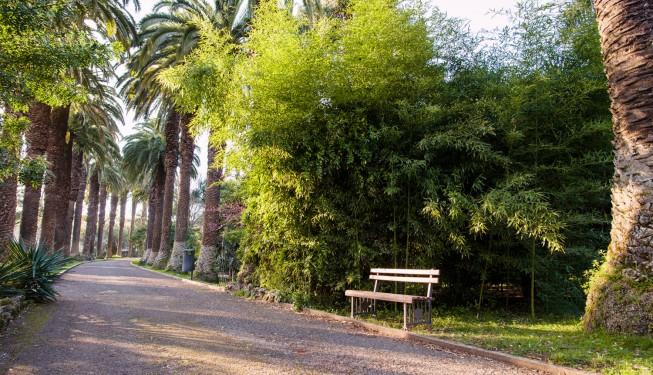 Ogród Tropikalny w Lizbonie