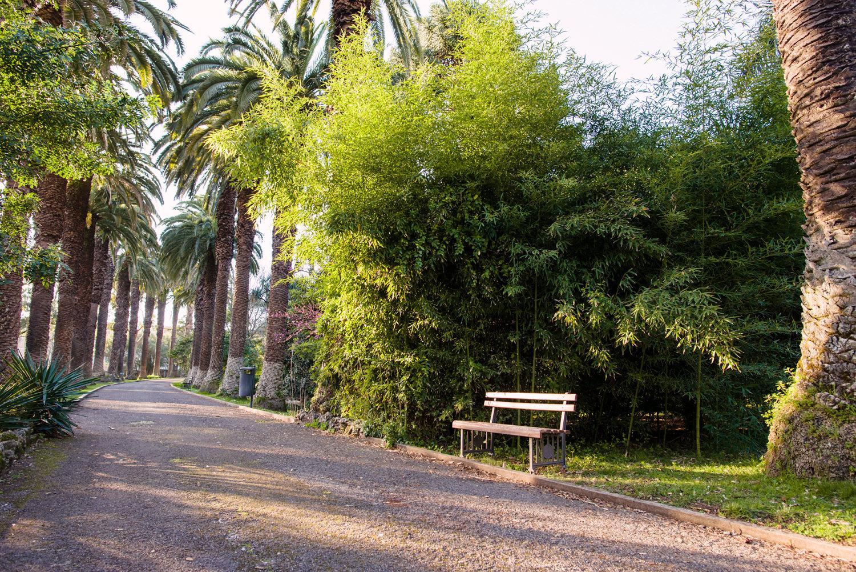 lizbona-ogrod-botaniczny