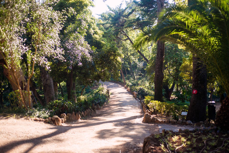 park w cascais