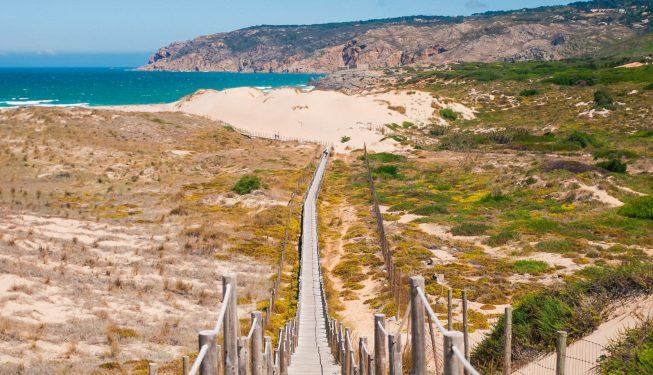 Pomysły na jednodniową wycieczkę z Lizbony