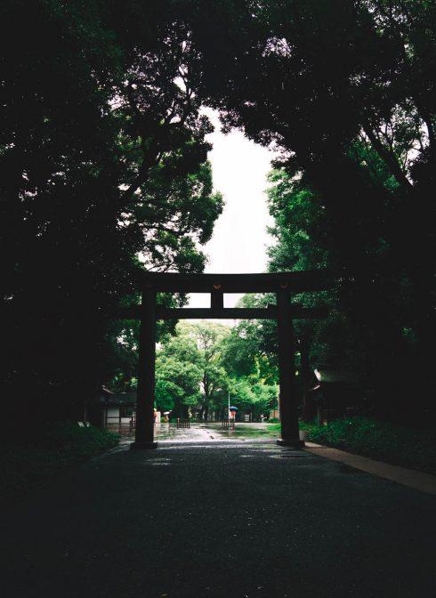 swiatynia-shinto-torii-brama