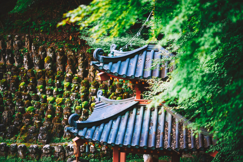 otagi-swiatynia-kioto