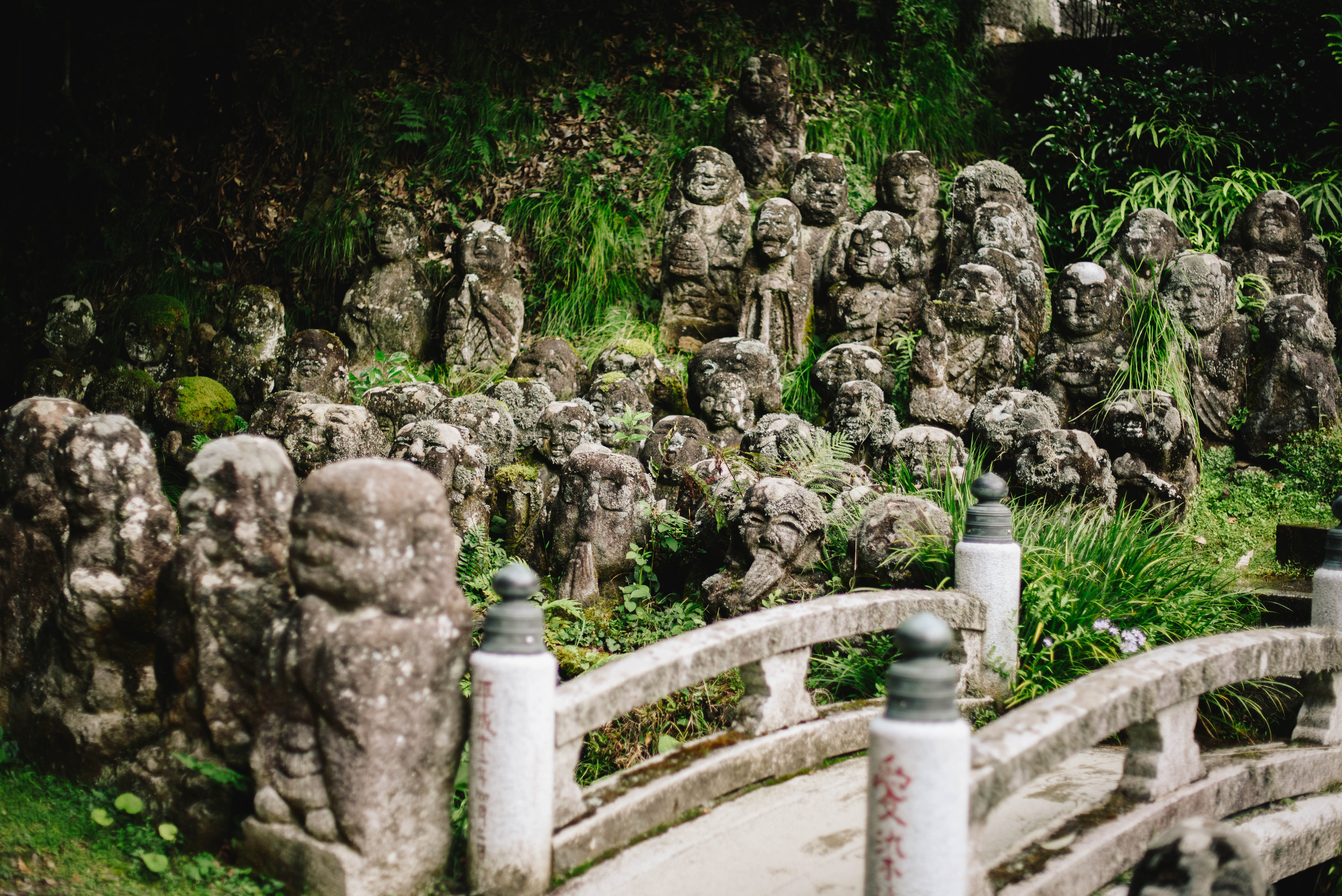 swiatynia-otagi-kioto
