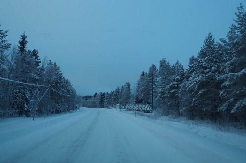 niebieskie zdjęcia zimą